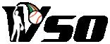 スローピッチソフトボールサークルVSO